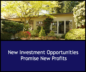 New Investing Opportunities Promise Profits